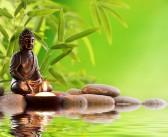 Meditation/övning 3 – Stärk dina sinnen smak och doft för ditt mediala arbete
